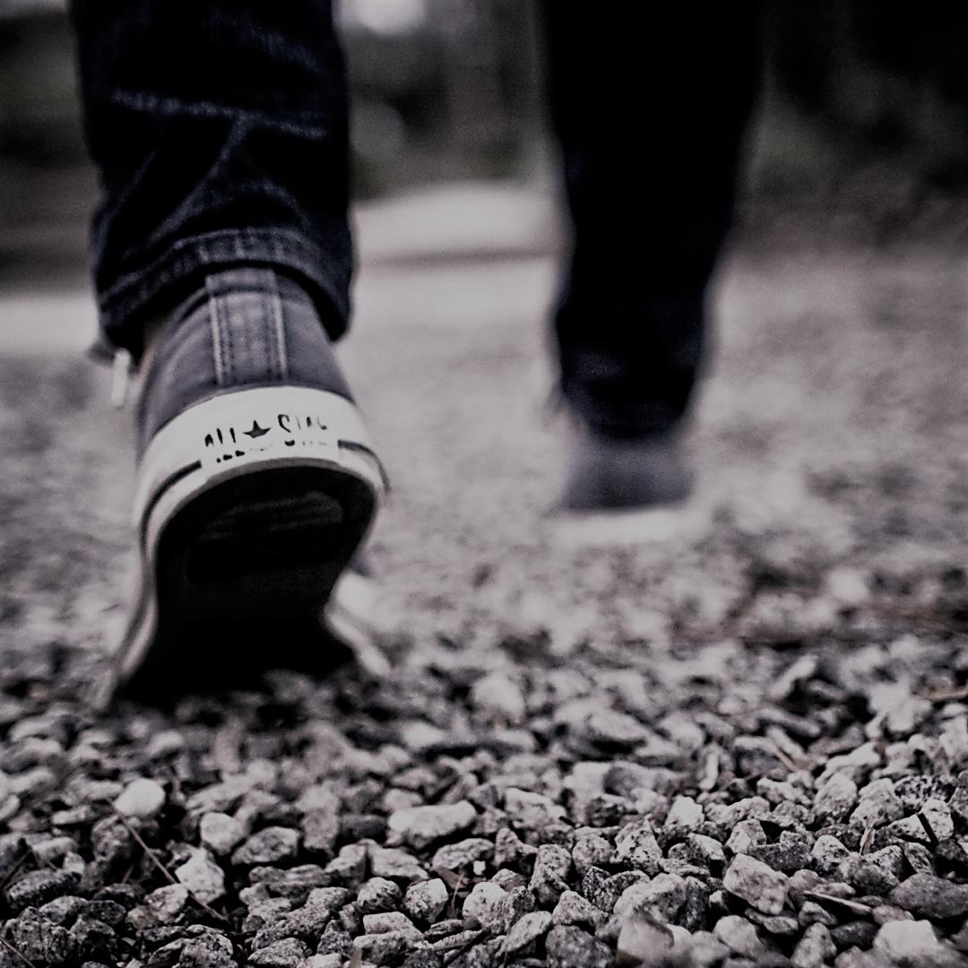 walking_slate_Zen4